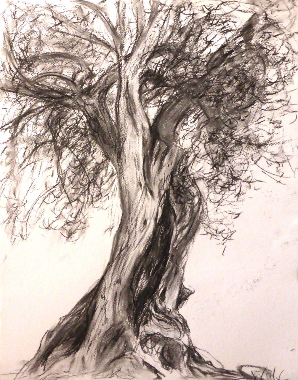 olivier Sardegne